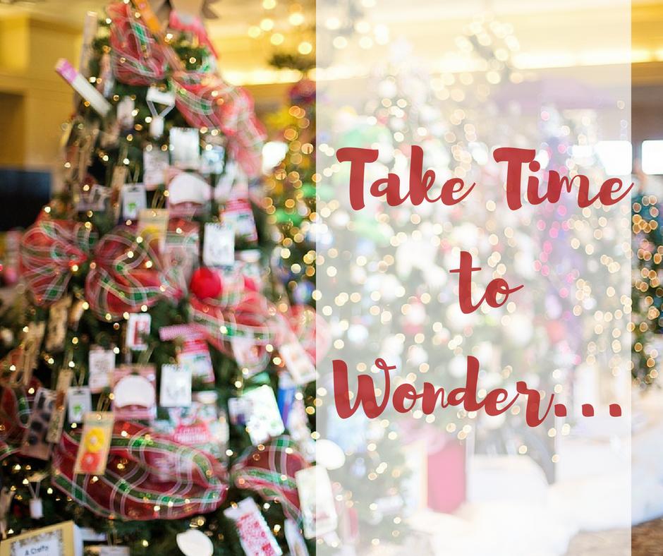 Take time to wonder …